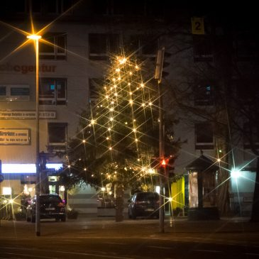 Bürgerverein platziert Stadtfelder Weihnachtsbaum auf dem Wilhelmstädter Platz