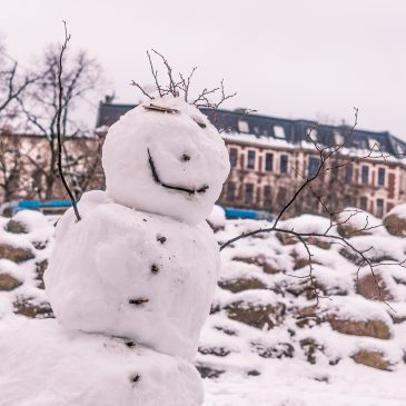 Winterliches Stadtfeld 2017
