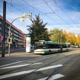 Linie 73 Favorit für Magdeburger Elektrobus