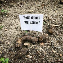 Hundekot: Das stinkt den Stadtfeldern