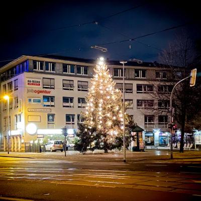 Weihnachtstanne auf dem Wilhelmstädter Platz